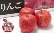 年内 最高級「特選」 糖度保証サンふじ 約10kg 【JA津軽みらい・平川市産・青森りんご・12月】