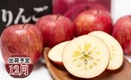 年内 蜜入り 糖度保証サンふじ 約3kg 【JA津軽みらい・平川市産・青森りんご・12月】