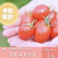 農薬・化学肥料不使用 河津さんの愛情たっぷりアイコトマト1kg