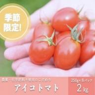 農薬・化学肥料不使用 河津さんの愛情たっぷりアイコトマト2kg