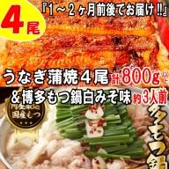 B152.うなぎの蒲焼4尾&博多もつ鍋白みそ味(3人前)【スタミナ満点セット】