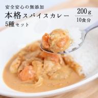 スパイス香る本格カレー5種(200g×10食)