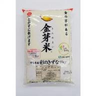 埼玉県産 金芽米(彩のきずな)10kg【BG無洗米】