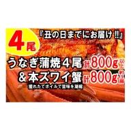 B151.うなぎの蒲焼4尾&ボイル本ズワイ蟹800g【海鮮プロの満足セット】