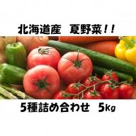 北海道産!あきやまさん家の夏野菜5種詰め合わせ 5kg