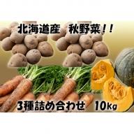 北海道産!あきやまさん家の秋野菜3種詰め合わせ 10kg