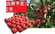 【訳あり】 りんご 約10kg サンふじ 青森産 【2月発送】