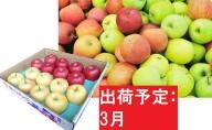 りんご 青森産 約5kg サンふじ 確約【3月発送】品種おまかせ2種以上 贈答用 特選~特秀