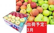 【訳あり】 りんご 約10kg サンふじ確約 青森産 【3月発送】品種おまかせ2種以上