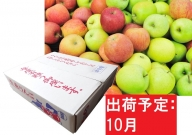 【訳あり】 りんご 青森産 約5kg 【10月発送】品種おまかせ1種