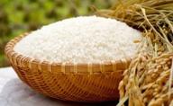 (新米)栄養価高い5分づき米!コシヒカリ【5分米】2kg×2袋