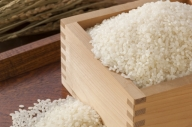 (新米)越前大野産 帰山さんの無洗米 コシヒカリ5kg