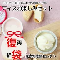 コロナに負けない!飛騨のミルクの旨味たっぷりアイスクリーム福袋セット[Q123]