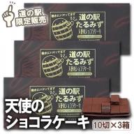 W-4501/【道の駅限定販売】天使のショコラケーキミニたるみず