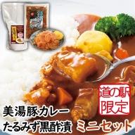 W-4503/【道の駅限定販売】美湯豚カレー・たるみず黒酢漬ミニセット