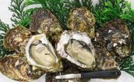 佐渡の新鮮岩牡蠣(いわがき)