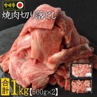 <焼肉用>宮崎牛切り落とし1kg※90日以内に出荷【C269】