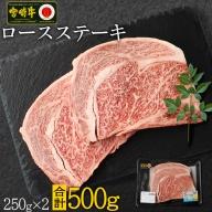 <焼肉・バーベキュー>宮崎牛ロースステーキ(250g×2枚)※90日以内に出荷【C270】