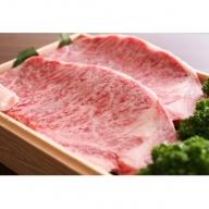 飛騨市推奨特産品極Kiwami 飛騨牛サーロインステーキ[F0006]