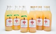 キラ農法 完熟りんごジュース「キラのしずく」1L×12本