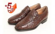 オーストリッチ革 ビジネスシューズ 紳士靴 スワローモカ 5cmアップ 4E ワイド No.67 ブラウン