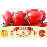 北海道仁木町産ミニトマト【アイコ】1kg×8箱