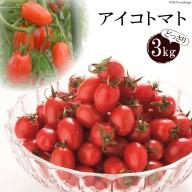 AA001全国にファンがいる高級フルーツトマト どっさり!アイコ3kg
