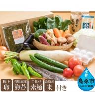 AD025直売所店長おすすめの野菜セット(極上卵、有明海産海苔、手延べ素麺、島原産米付き)