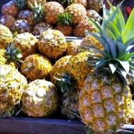 パイナップル食べ比べセット