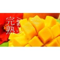【沖縄県認定農業指導士が蜜蜂とつくった大自然のアップルマンゴー】約700g