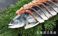 北海道日高産 銀毛鮭姿切身(生冷凍)1尾2kg前後[B01-204]