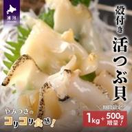 浦河前浜産 活つぶ貝1kg+500g(お刺身用) [B02-054]