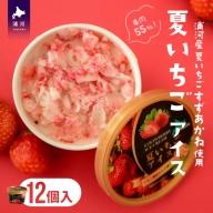 果肉55%「夏いちごアイス(12個)」北海道のいちご農家の贈り物 [B22-237]