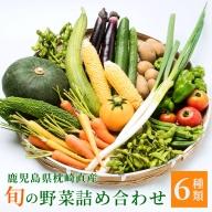 NN-0014 定期便 年6回 鹿児島県枕崎産 旬の野菜 厳選 詰め合わせ 野菜ソムリエ レシピ付き