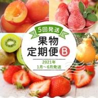 果物定期便B(5回発送)2020