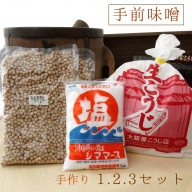 【ふるさと納税】生こうじの大阪屋の麹で作る絶品手前味噌