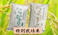特別栽培米★白米4kg【コシヒカリ・ミルキークイーン】