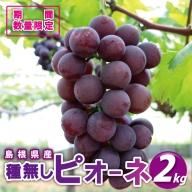 【糖度18度以上!】種無しピオーネ約2kg【予約受付9月中旬~お届け予定】