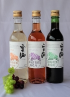 02-54_明日への活力 すっきり辛口 ~ワインミニボトル 3種~