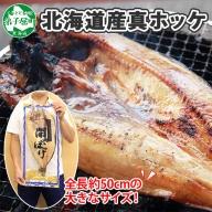 361.  北海道産 特大 真ホッケ 約1kg 1尾 北海道 干物 ほっけ 焼き魚