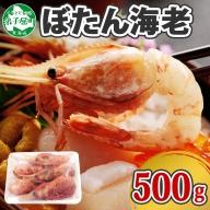 359. ボタンエビ 500g 北海道 えび エビ 海老 お刺身 魚介 海鮮