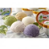 くりーむ童話アイスクリームセットC(20個入)