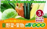 【3ヶ月定期便】穫れたて!夏野菜・果物定期便(6~8月)★あんずの里[C6296]