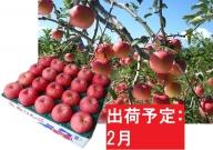 りんご 青森産 約5kg 丸福 サンふじ 光センサー選果 糖度 12度以上【2月発送】