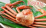 【おすすめ】新湊産紅ズワイガニ約800g【木や水産】