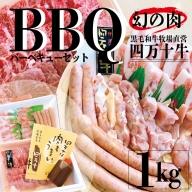 20-720.幻の肉!四万十牛バーベキューセット1kg(精肉のみ)5人前【野菜は含まれません】