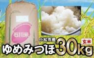 028004. 【令和2年産・新米】ゆめみづほ 玄米30kg