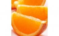 ZH6153_家庭用完熟清見オレンジ 6kg