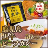 鹿児島黒牛ビーフカレー 30パックセット