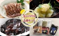 富山の珍味三種セット (DGFU30)  昆布締め こんぶじめ 刺身 さしみ 詰め合わせ 富山  おつまみ ほたるいか シロエビ 白エビ